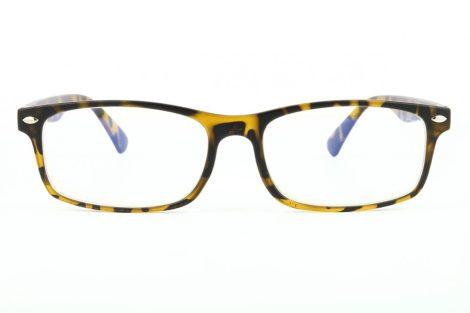 Computer glasses BLF83A